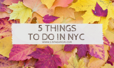 nyc events, october things to do, things to do with kids, family events nyc, bronx events, manhattan events, halloween events, amnh, american museum of natural history