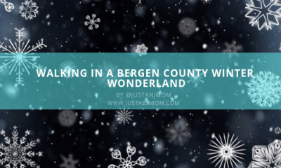 things to donj, bergen county things to do, winter wonderland,