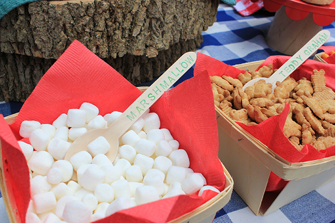 trail mix bar, Summer Camp Tablescape, camping, s'mores, kids party, lanterns, trail mix, camping party, summer camp party