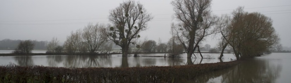Floods in the Somerset Levels