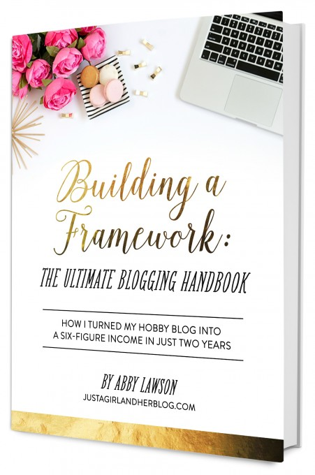 Framework2_BookMockUp-White-Background-451x680