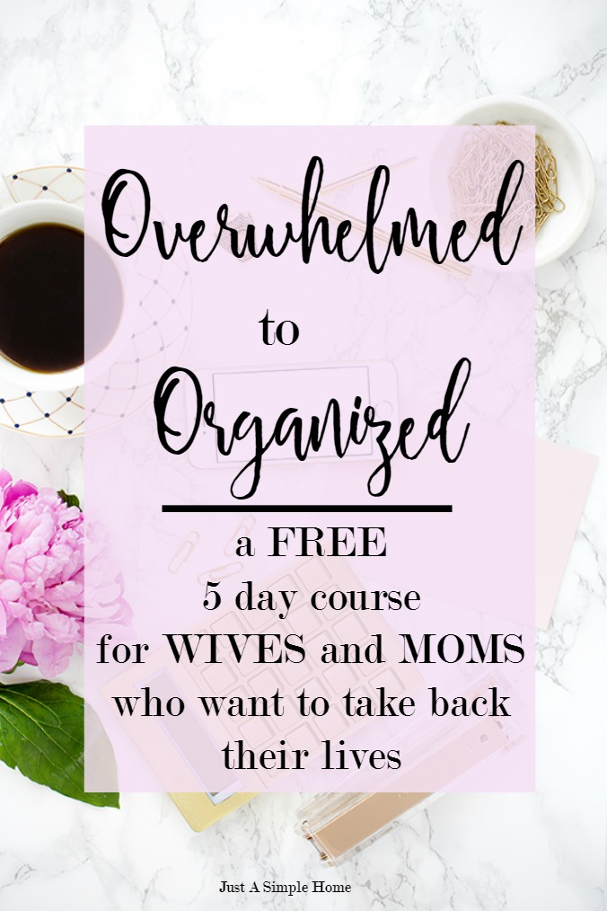 Overwhelmed to Organized Pin