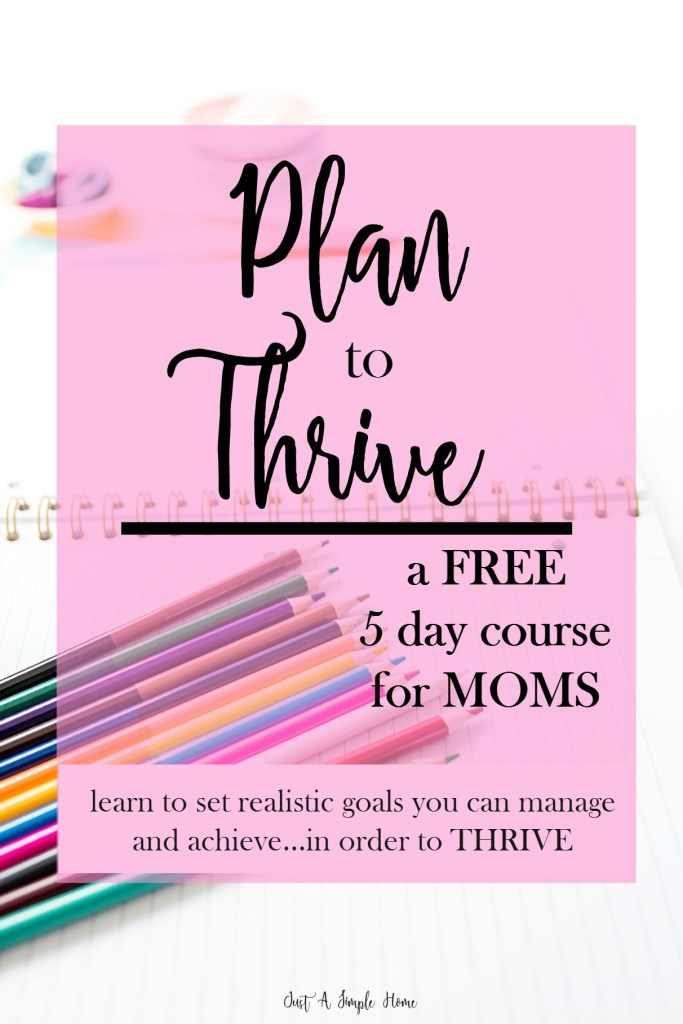Plan to Thrive - Just A Simple Home