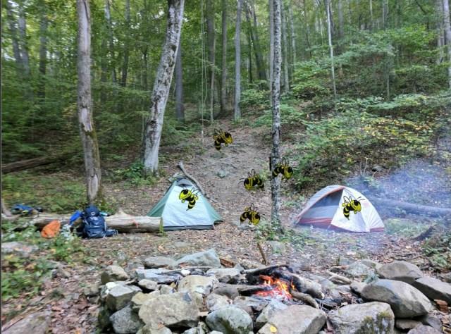hiking yellow jacket