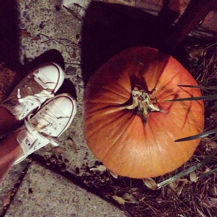 Emily's Pumpkins