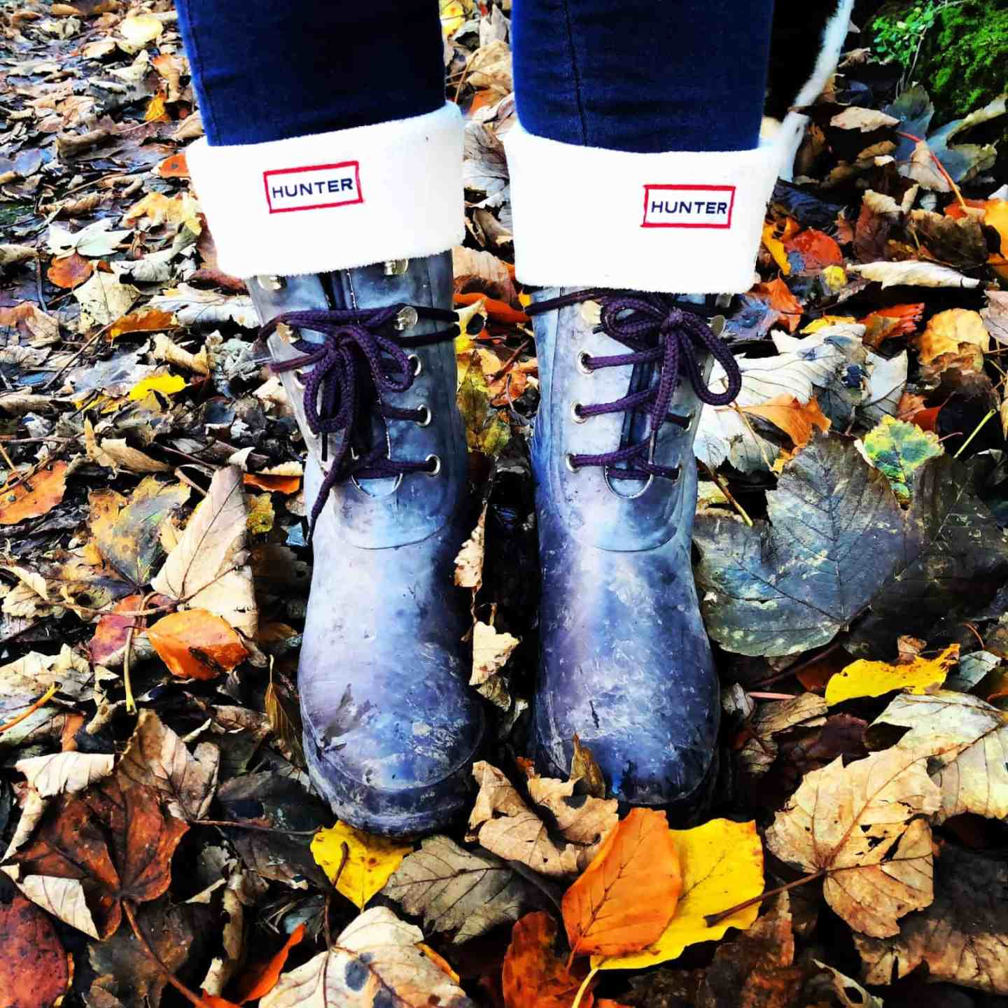 Walking boots standing on crispy autumn leaves