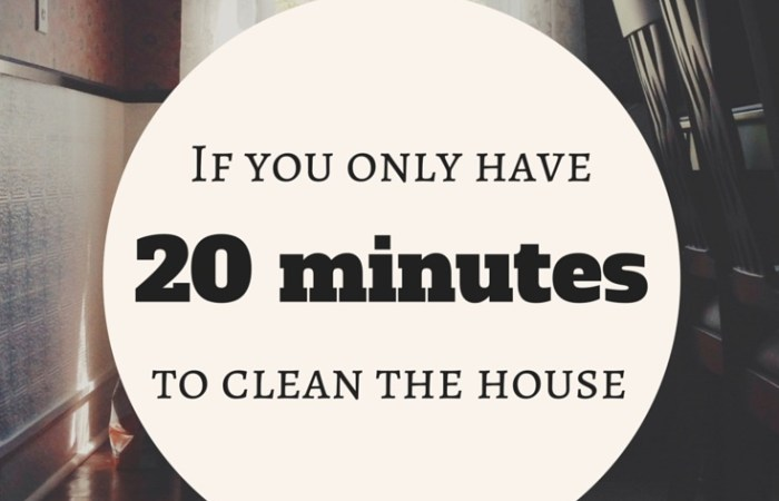 If You Only Have 20 Minutes To Clean The House