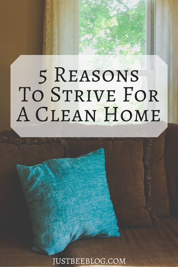 5 Reasons to Strive For a Clean Home