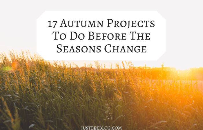 17 Autumn Projects To Do Before The Seasons Change