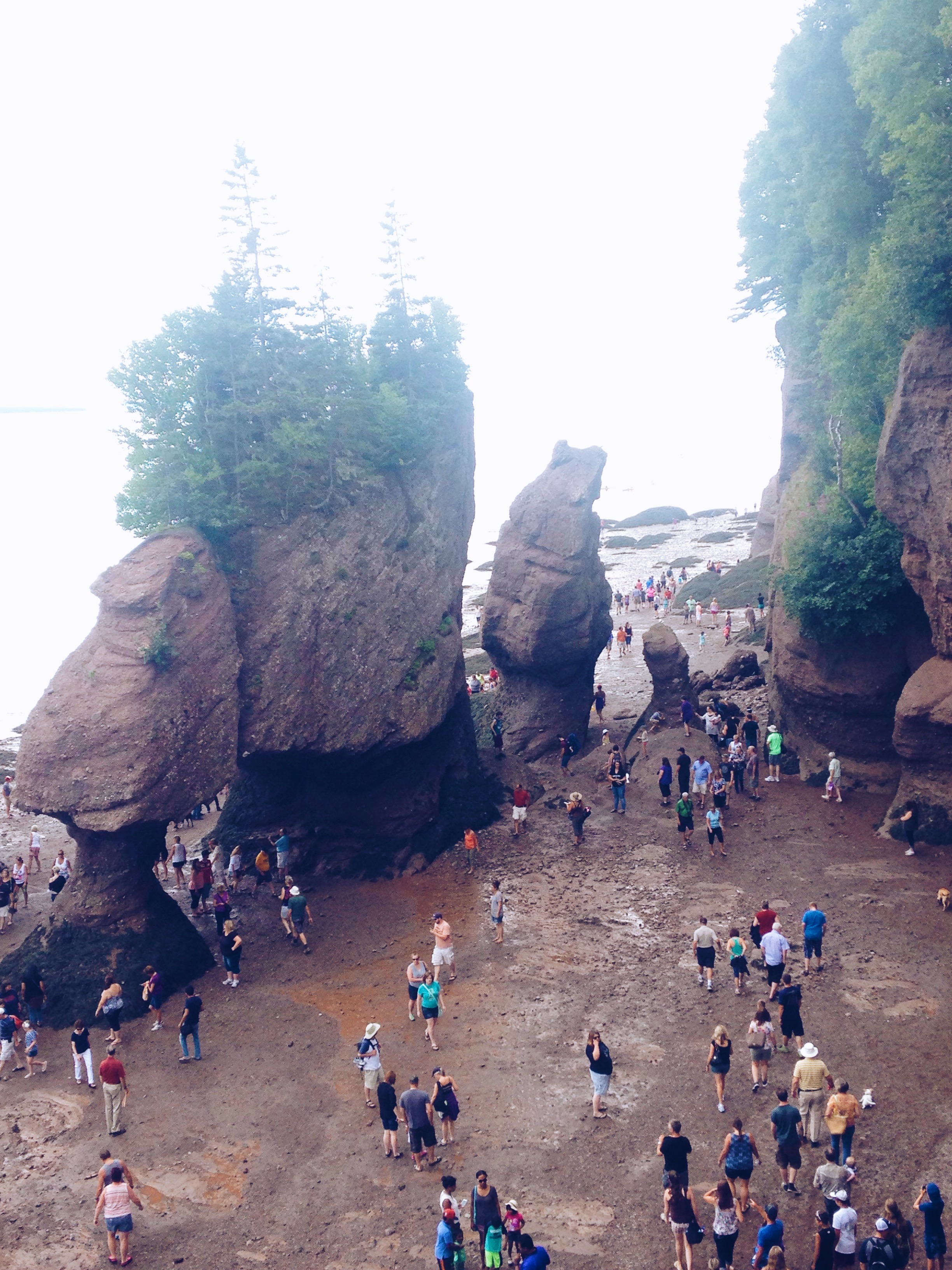 www.justbeingbrooklyn.com-Bay of Fundy