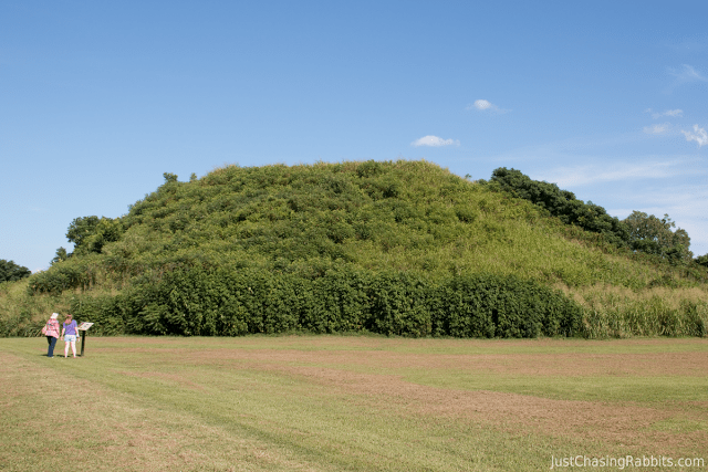 The Native American Winterville Mounds of Greenville, Mississippi