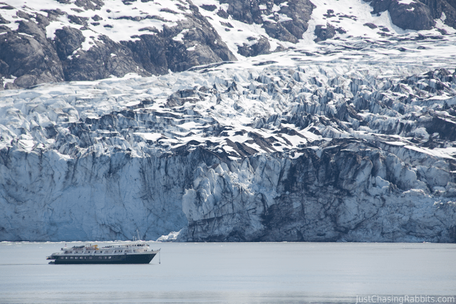 Ship looking tiny next to Lamplugh Glacier