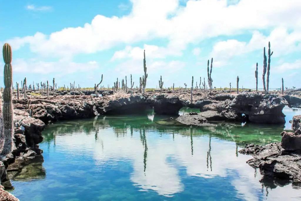 Los Tuneles Galapagos
