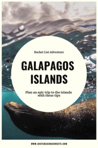 galapagos islands tips