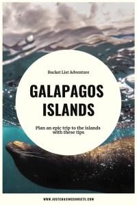 galapagos islands tips