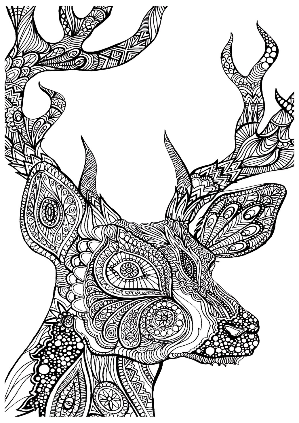 free adult coloring pages: 35 gorgeous printable coloring pages to