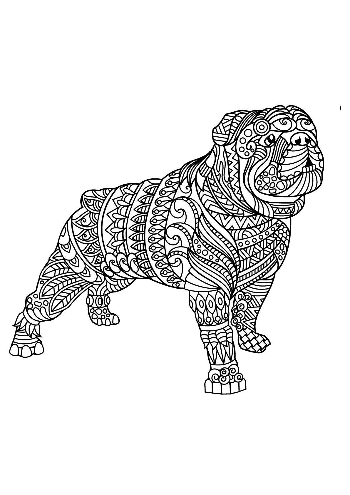 Livre Gratuit Bulldog 2