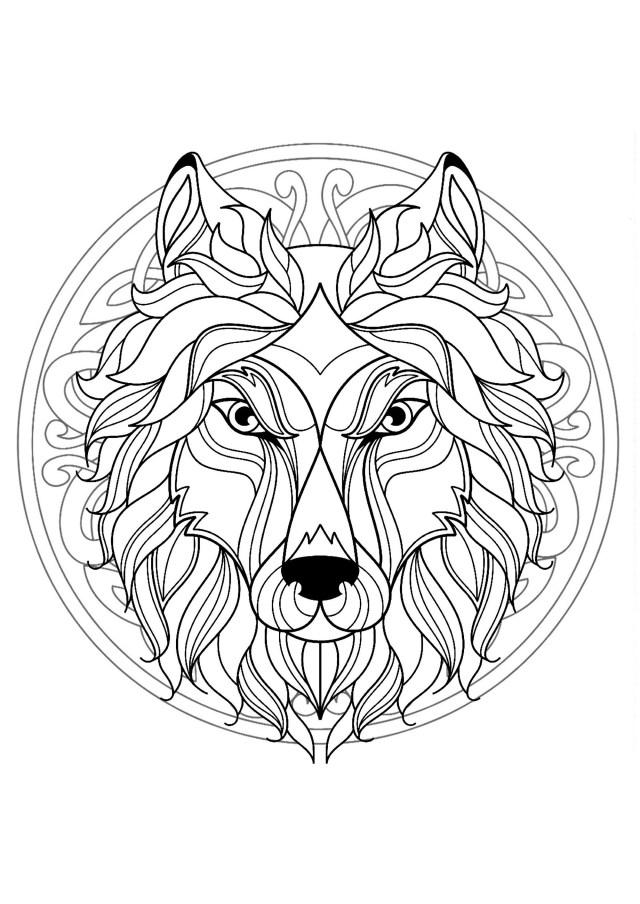 Coloriage Mandala Lion A Imprimer - Ronnie