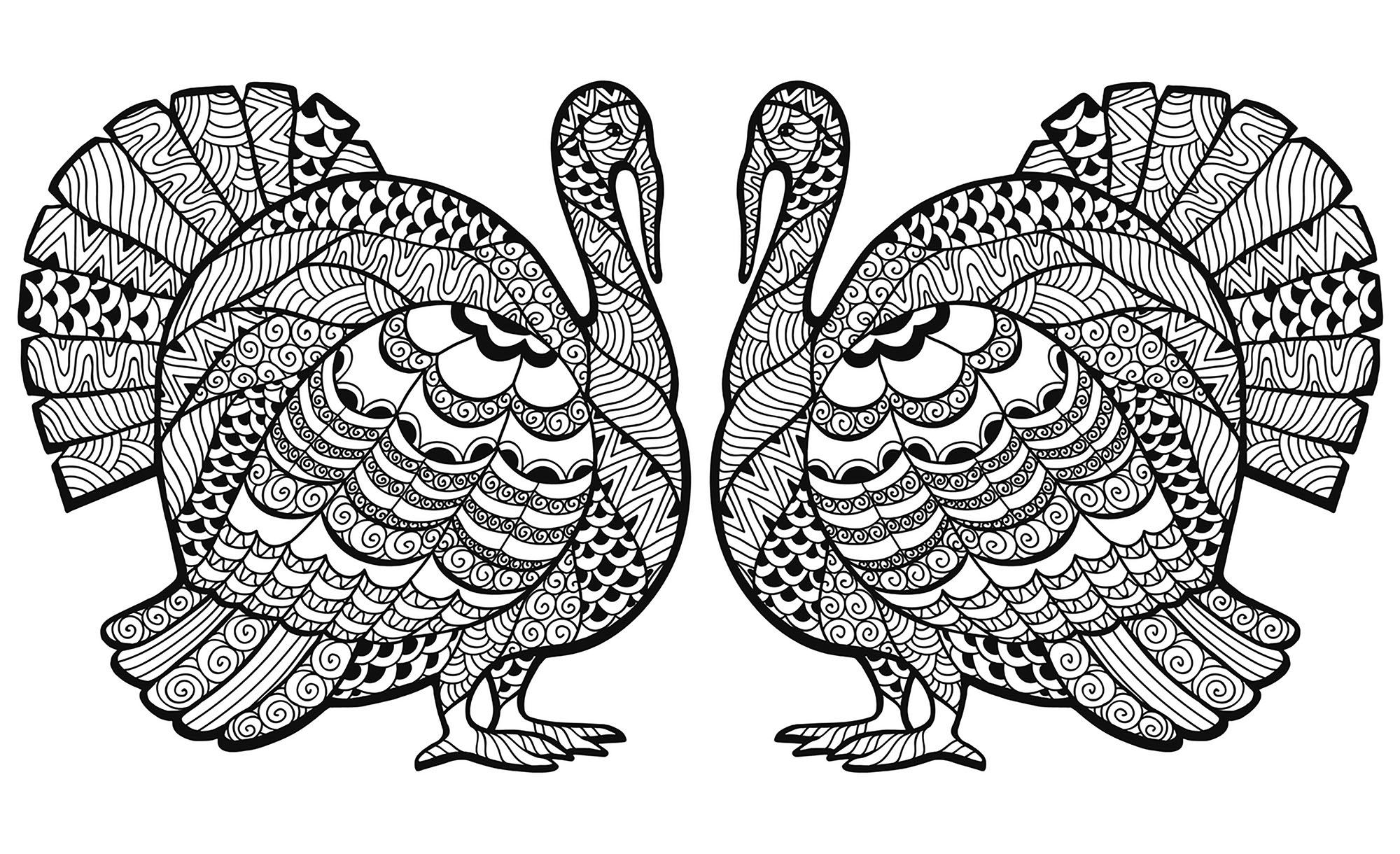 Thanksgiving Zentangle Dinde En Double