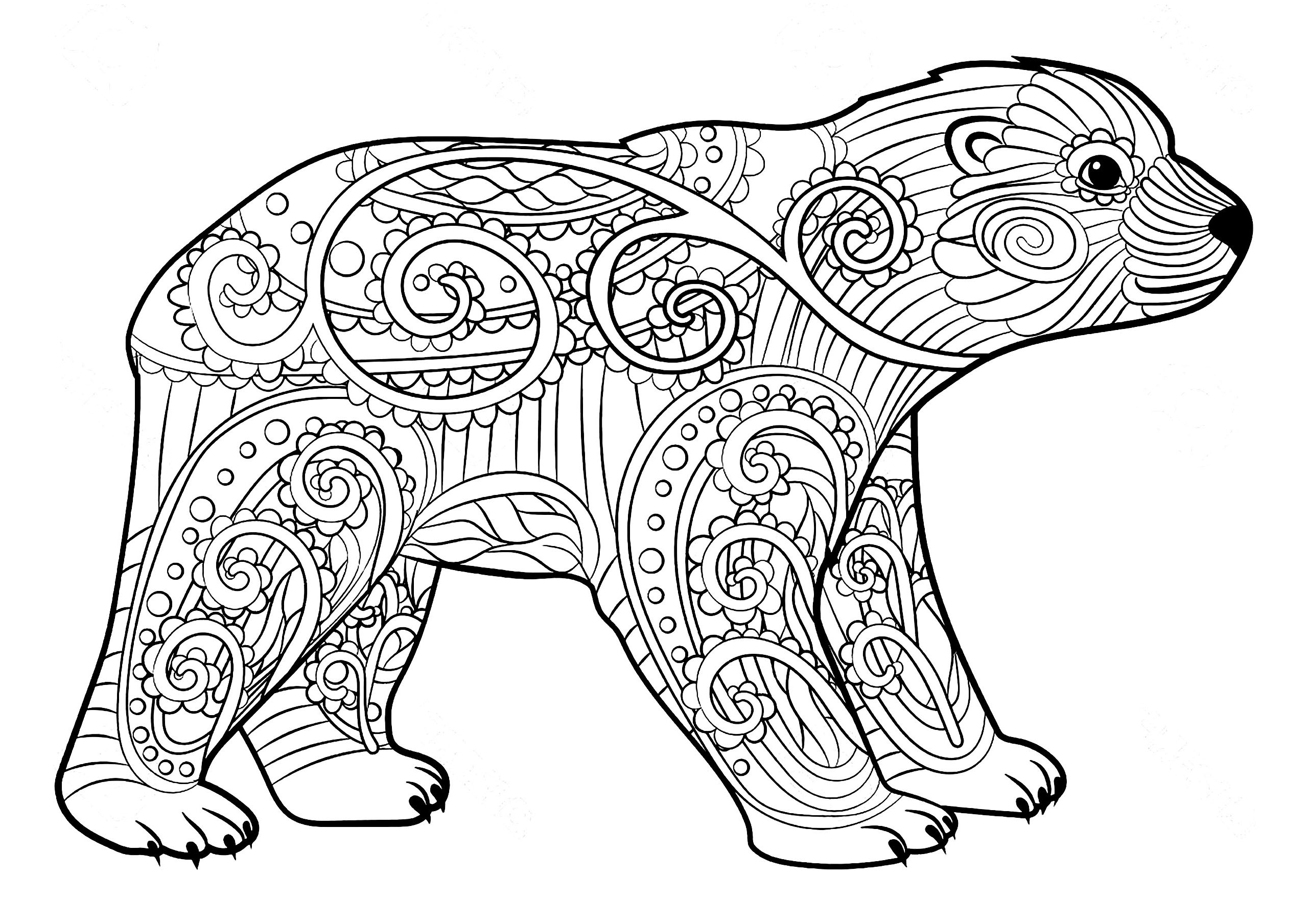 Bears To Color For Kids