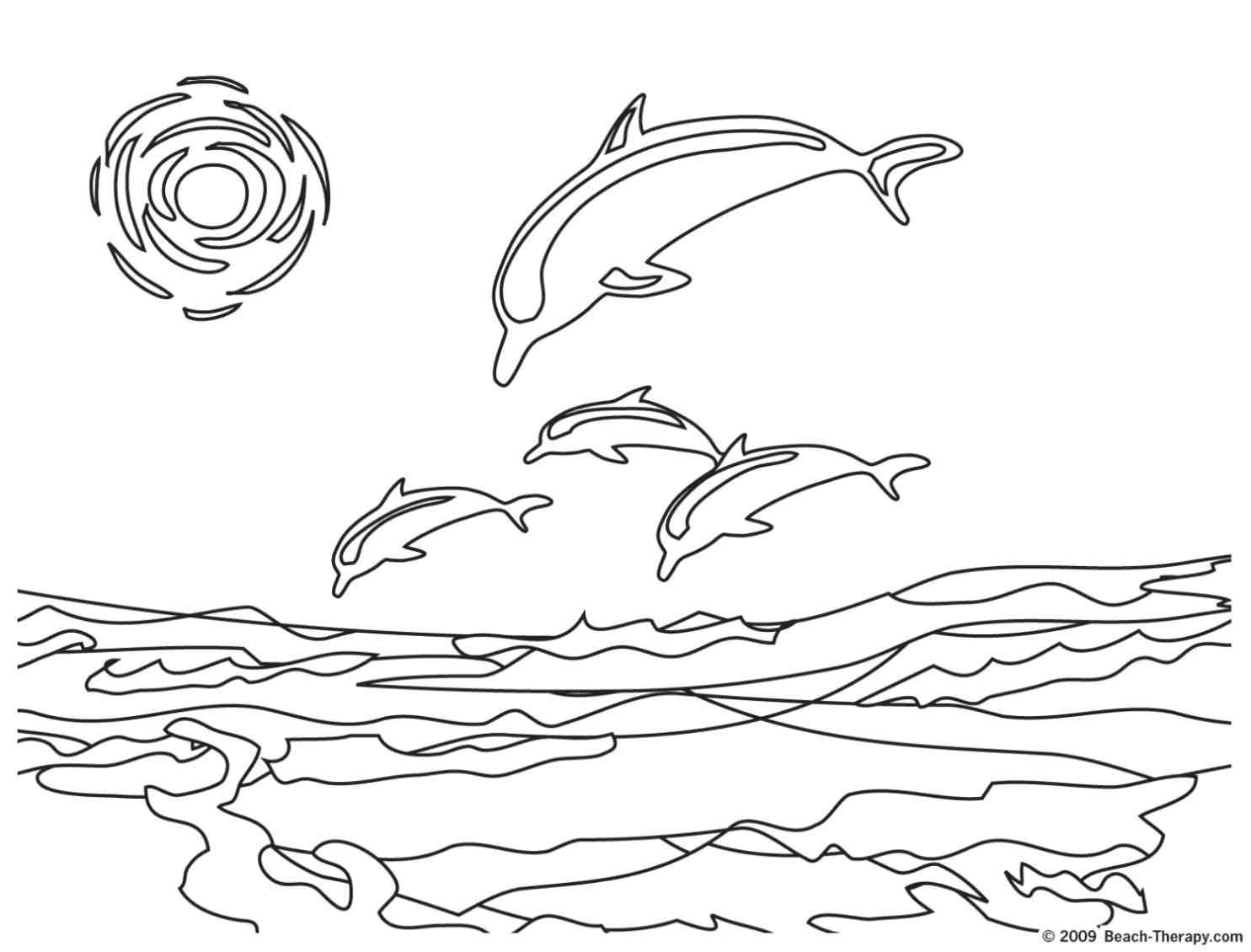 Dolphins For Children