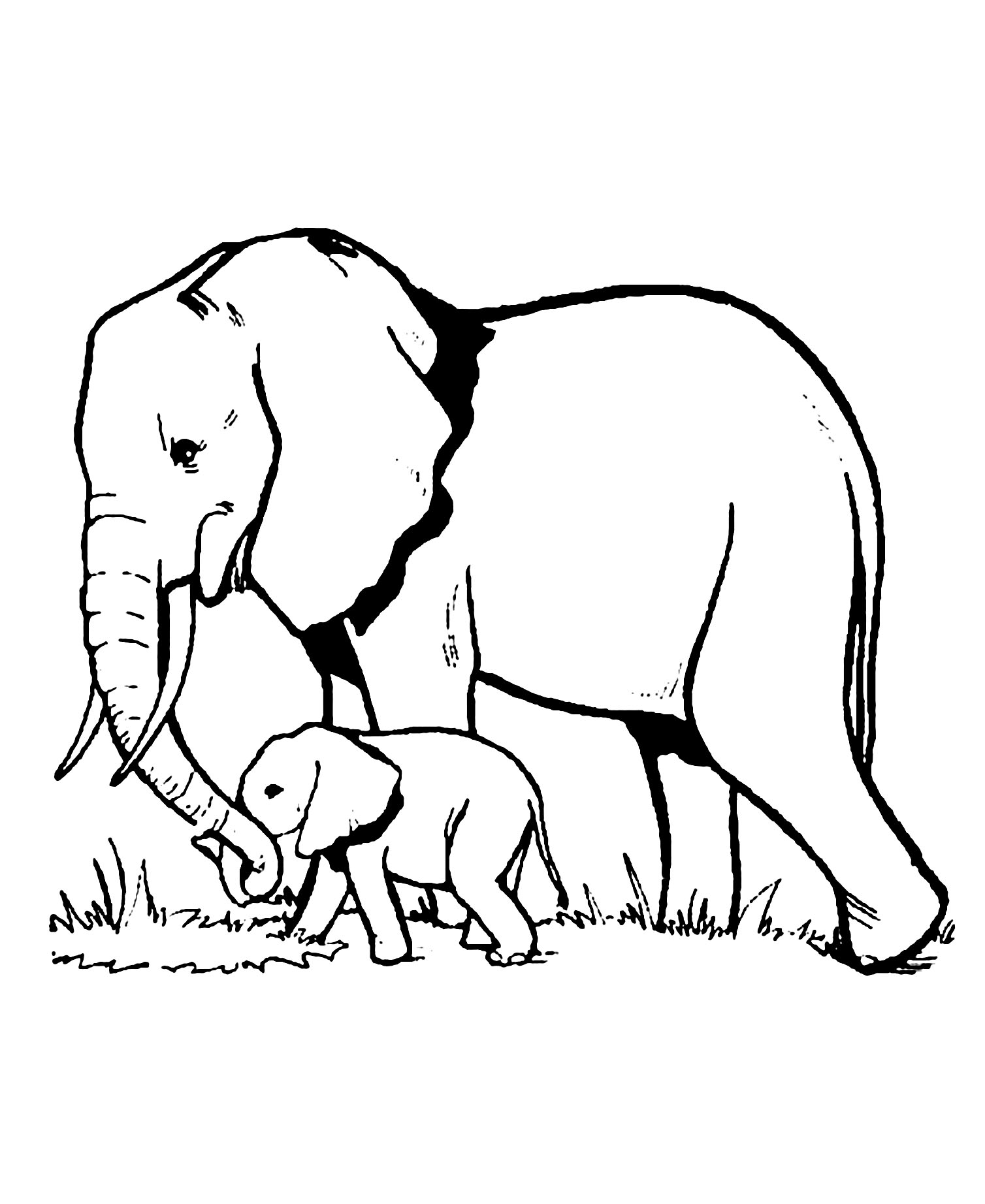 Elephants Free To Color For Children