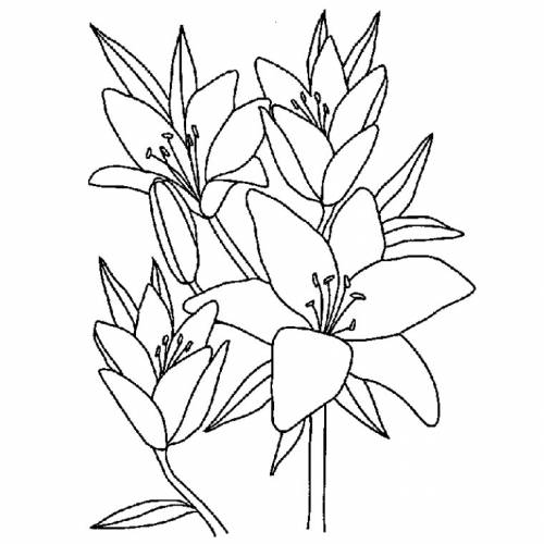 Flowers To Color For Children Flowers Kids Coloring Pages