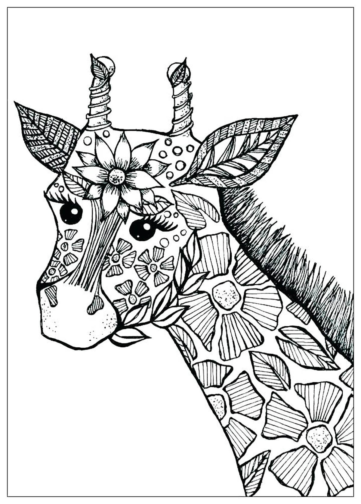 Coloring Pages For Kids Giraffe