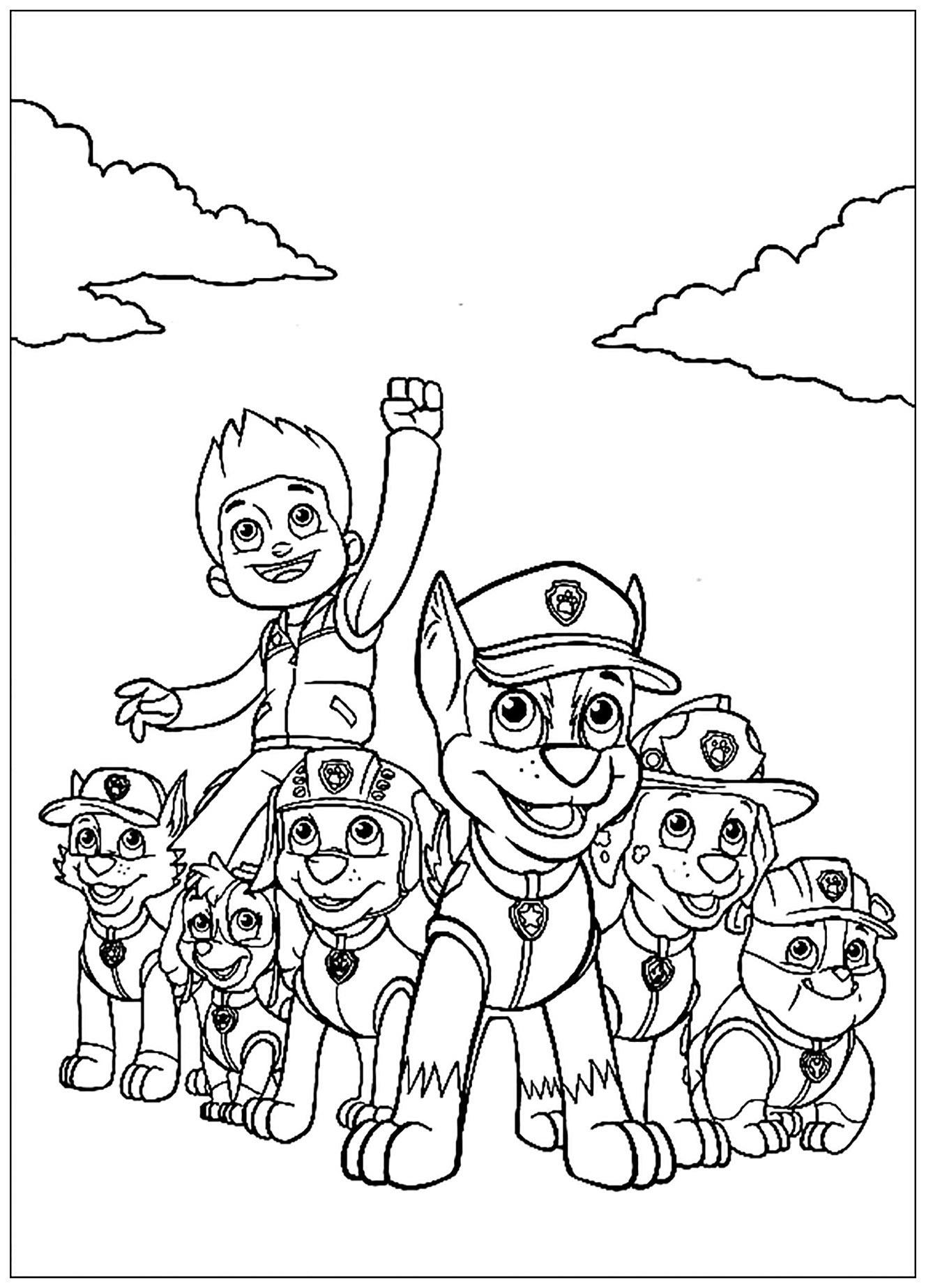 Paw Patrol For Children