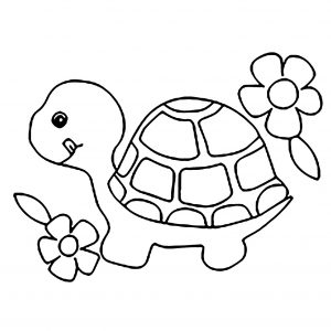 Turtles Free Printable Coloring Pages For Kids