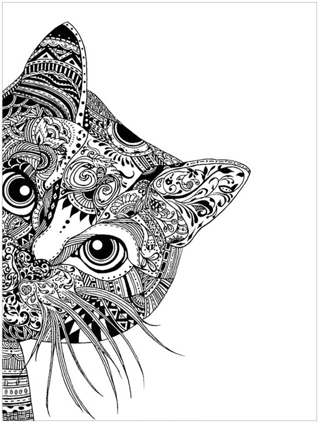 Cat head - Cats Adult Coloring Pages