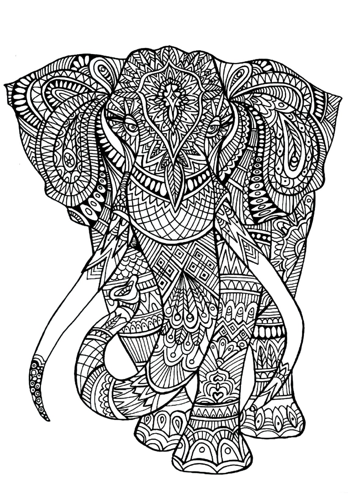 Elephant patterns | Animals - Coloring pages for adults ... | free printable coloring pages for adults animals