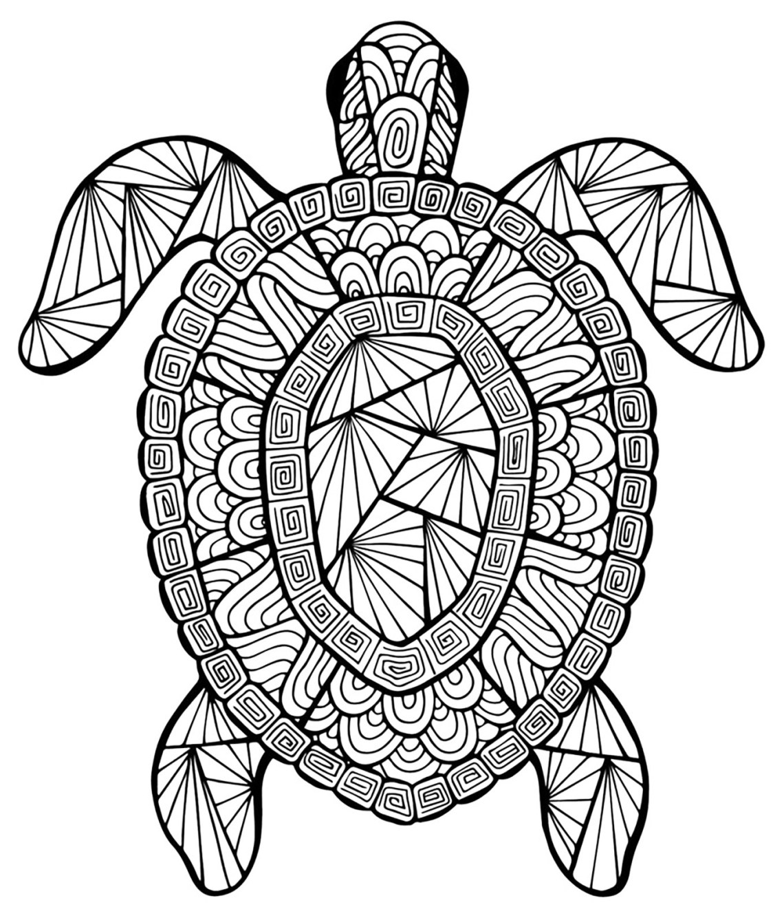 Incredible turtle | Animals - Coloring pages for adults ... | coloring pictures for adults animals