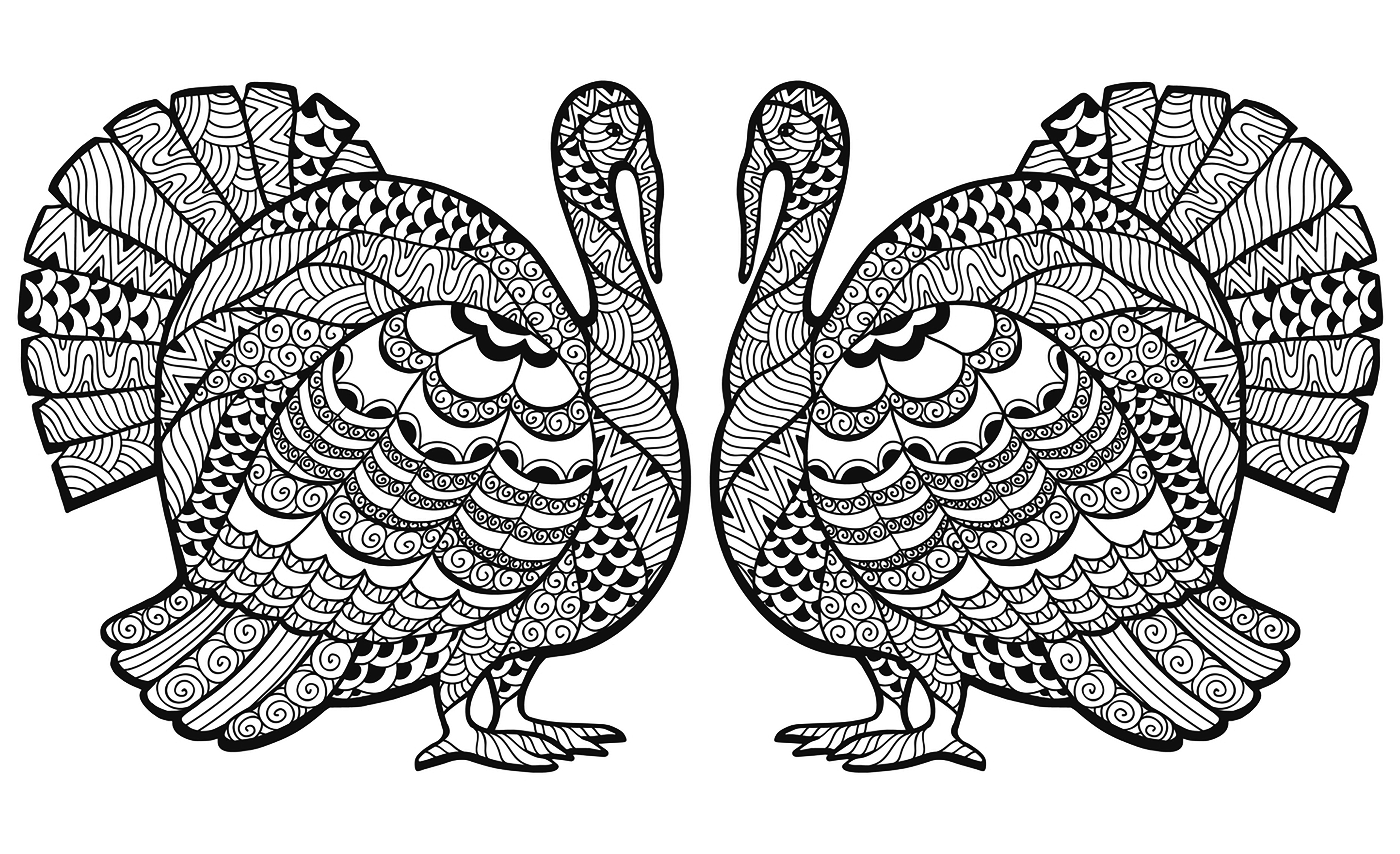 Double Turkey Zentangle Coloring Sheet