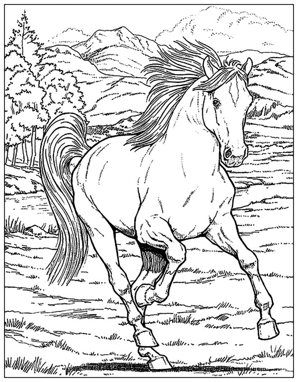horse coloring pages # 12