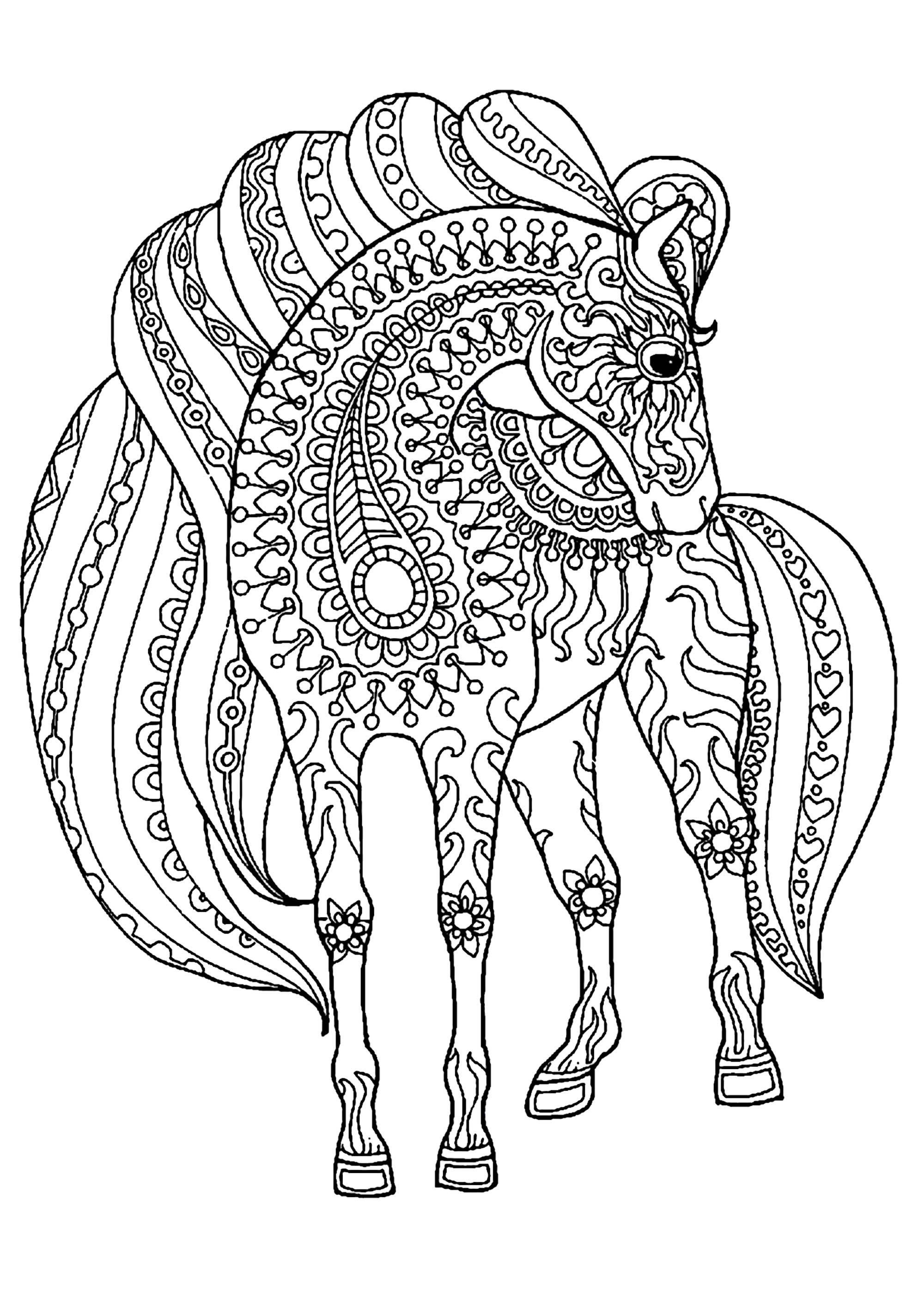 Horse Simple Zentangle Patterns Horses Coloring Pages For