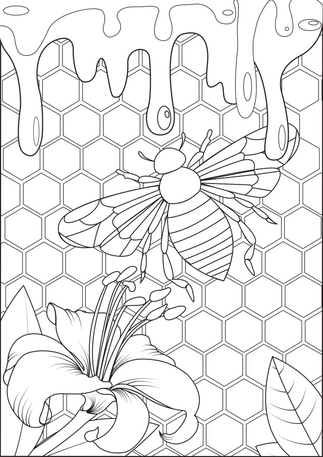 Bee and honey - Butterflies & insects Adult Coloring Pages