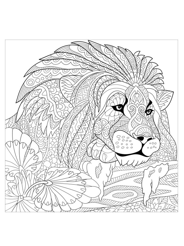 Lions Tigers And Bears Coloring Pages | Wallsmiga.co