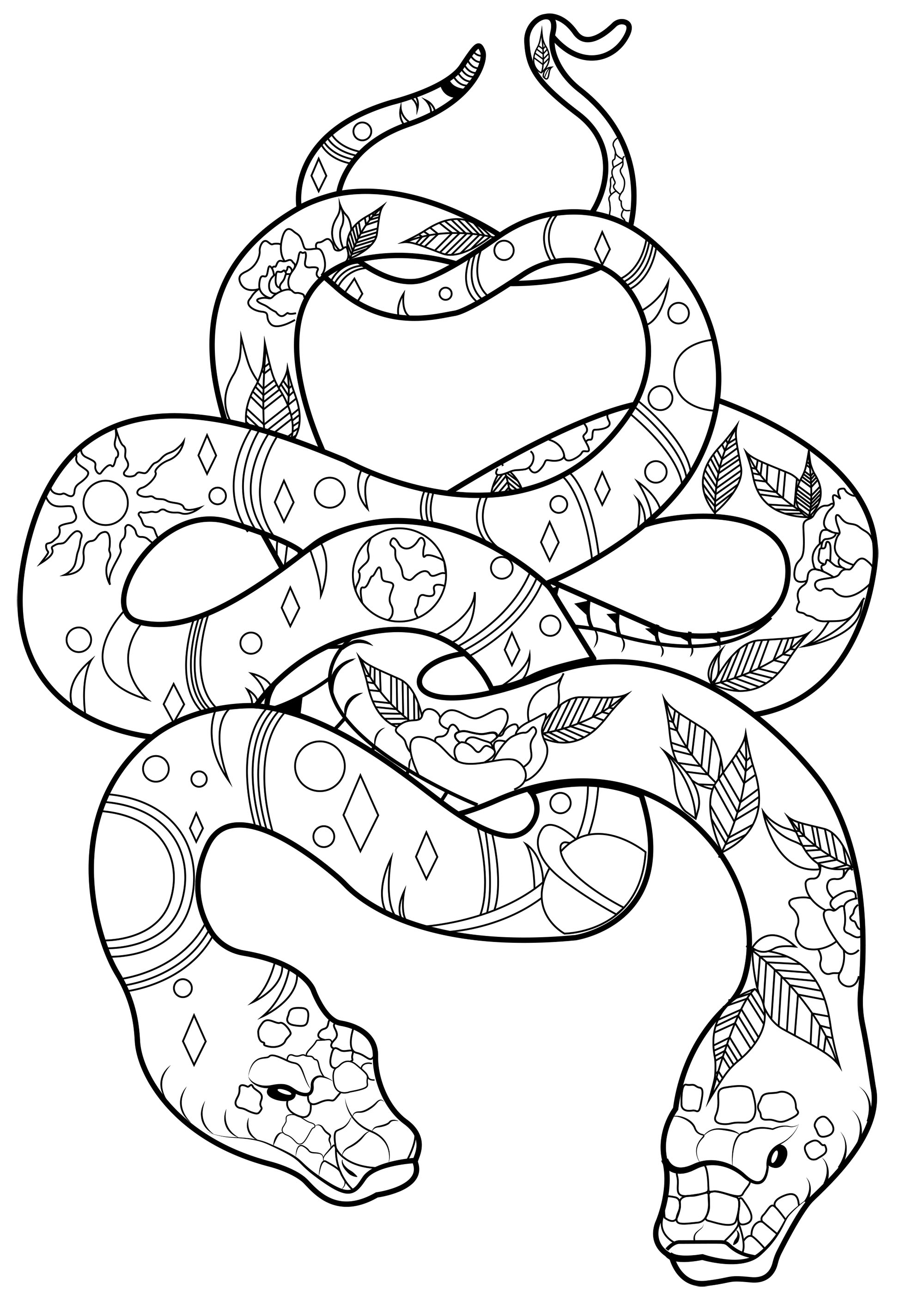 Two Snakes With Patterns Snakes Adult Coloring Pages