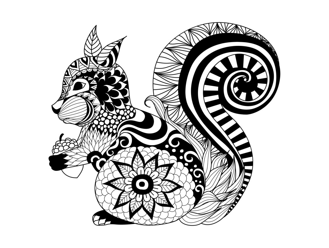Zentangle squirrel - Squirrels & Rodents Adult Coloring Pages | mandala art coloring pages animals
