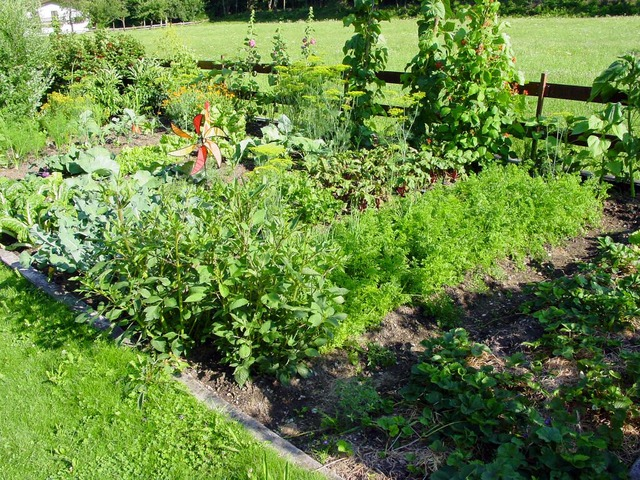 All About the Homestead Garden