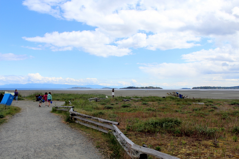 Gorgeous Rathtrevor Beach Provincial Park is just outside Parksville.