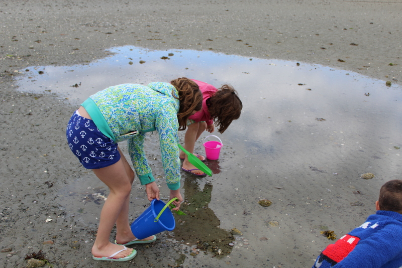 crab hunting on the beach on Vancouver Island.