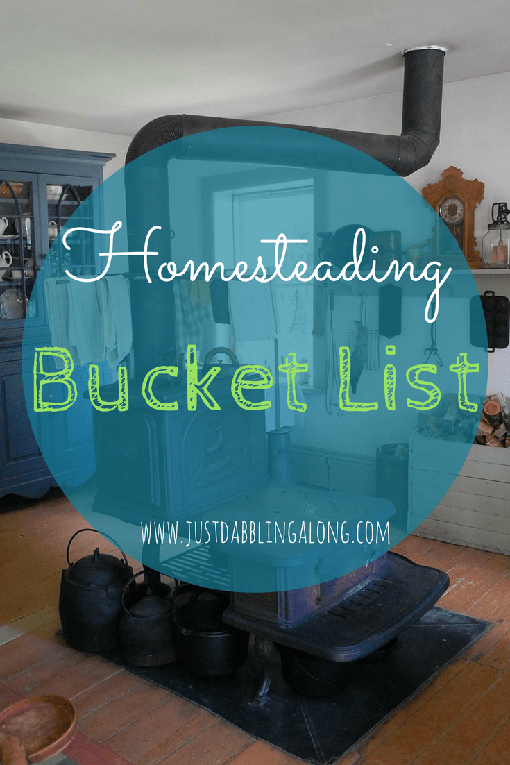 Starting your homestead and want some inspiration for your own bucket list? Maybe we have some of the same goals!