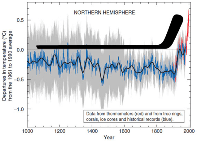 Billedresultat for al gore hockey stick