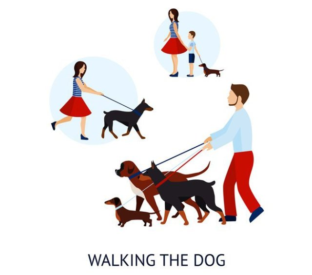Uber for Dog Walking App