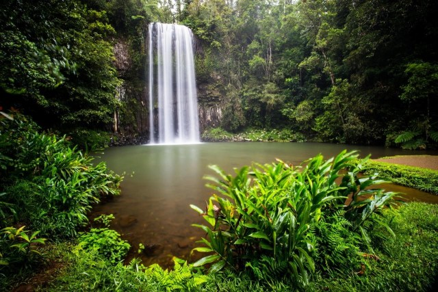 4 Things to Know Before Visiting Montville, Australia