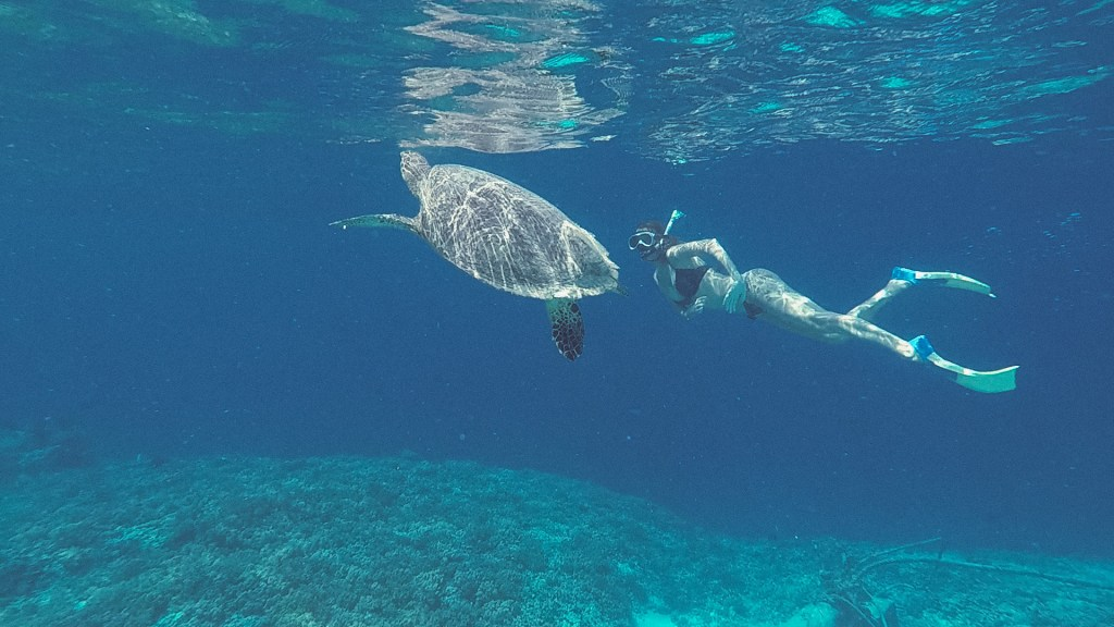 Girl swimming underwater with sea turtle