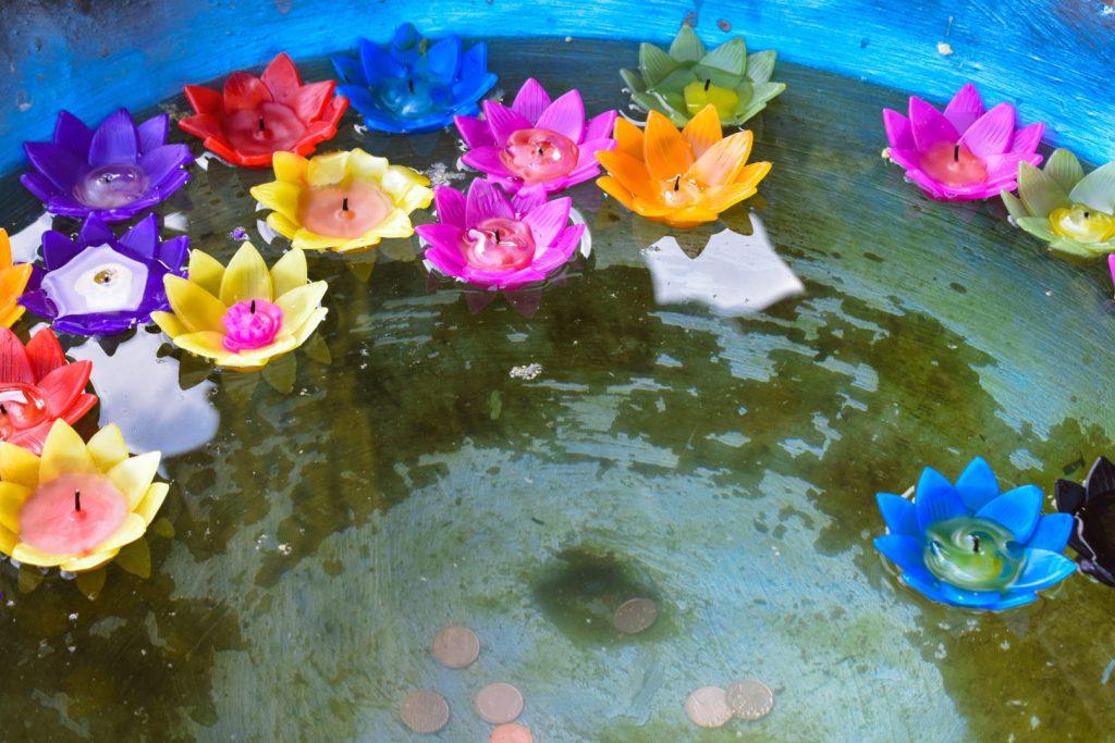 Blue Temple Chiang Rai Flowers Outside Temple