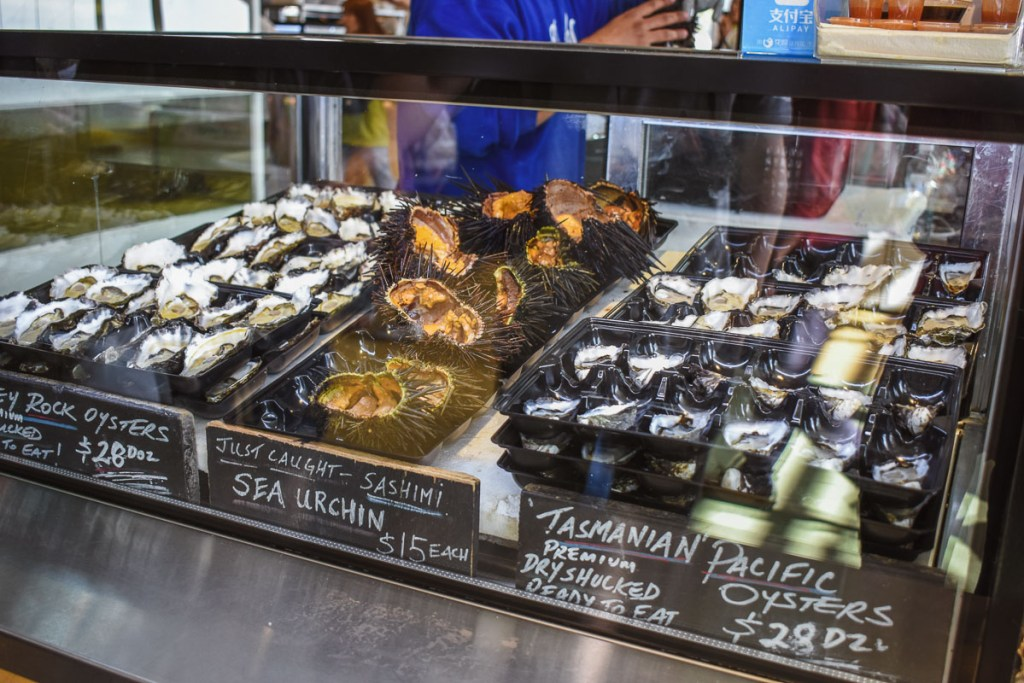 Sea urchins and Tasmanian pacific oysters